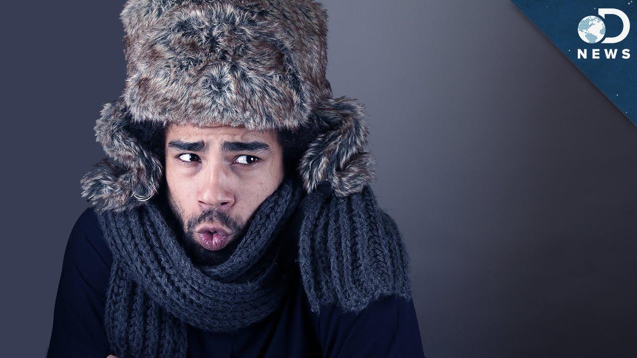 friguros pentru pierderea de grăsime pierde în greutate în sensul punjabi
