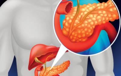 cum să slăbești cu pancreatita ce s-a întâmplat cu pierderea de grăsime pentru idioți