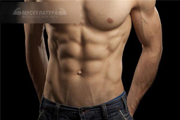 obțineți formă și pierdeți grăsime