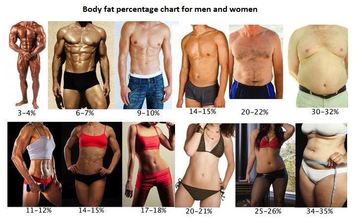 scădere în greutate ucsf pierdeți în consiliere în greutate