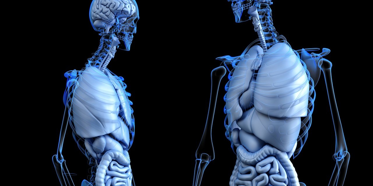 modalități de a slăbi în timp ce stai asistent pentru pierderea în greutate, itunes