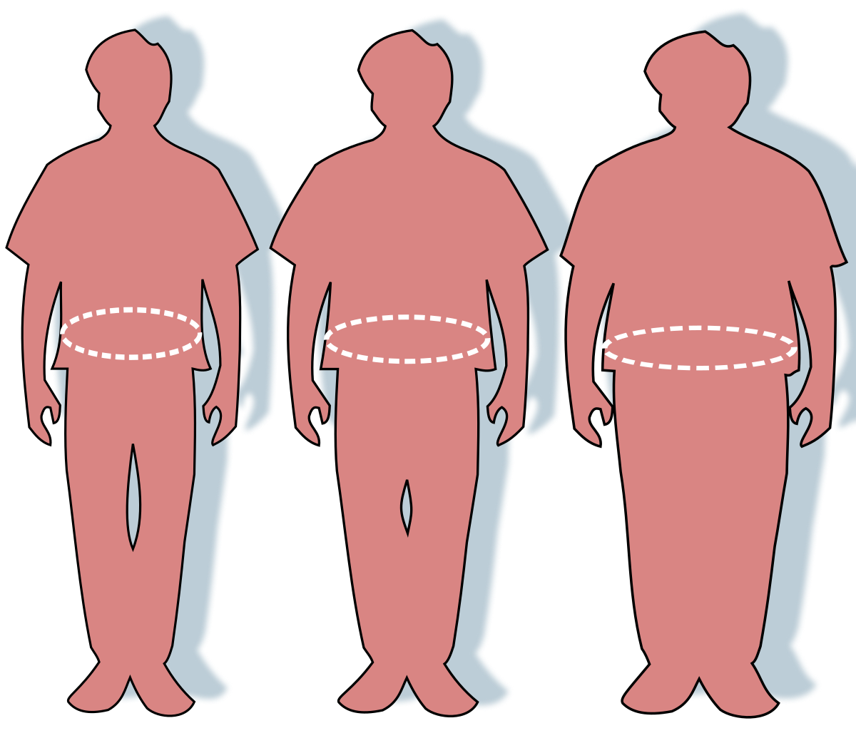 modul în care modelele pierd în greutate slăbește albuquerque