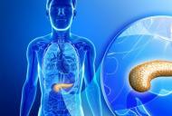 puteți avea pierderi în greutate cu pancreatită pierdere în greutate mirvala 28
